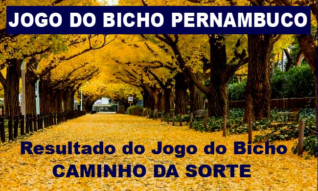 JOGO DO BICHO DE PERNAMBUCO (CAMINHO DA SORTE)